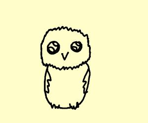 An insanly cute little owel