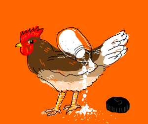 Chicken spills the salt