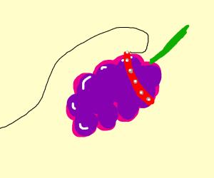 Pet Grapefruit