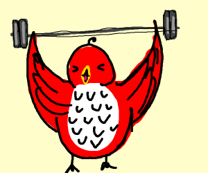 Weightlifting red birb