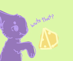 Furry fan puzzled by Swiss cheese