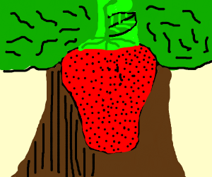 Strawberry with excesive amount of seeds