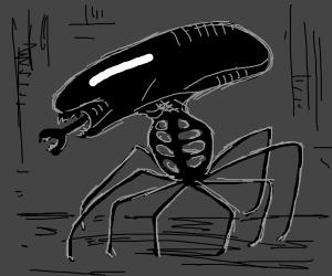 Spider Alien