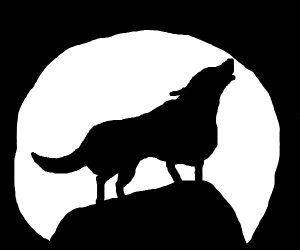 wolf howling at the full moon on a cliff