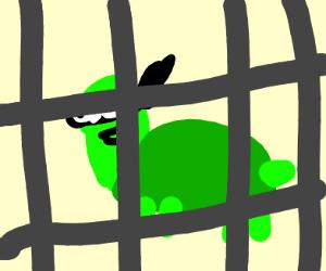 derpy ninja turtle in jail