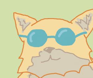 a rad dog with sunglasses