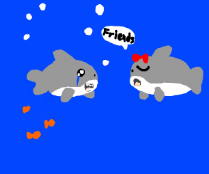 A shark get friend zoned