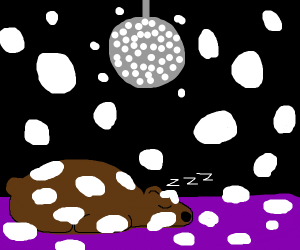 animal hibernation disco