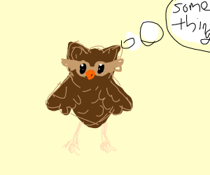 Owl thinks about something