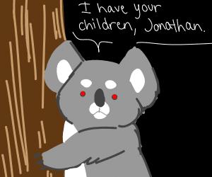 Evil koala D: