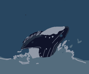Humpback whale leaping out of water