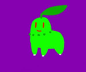 Chickorita