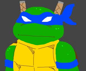 Leonardo from Teenage Mutant Ninja Turtles