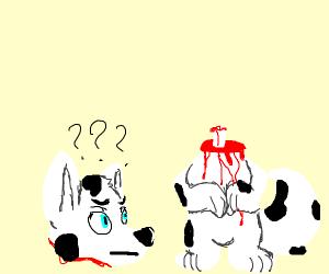 Decapitated dog bleeding