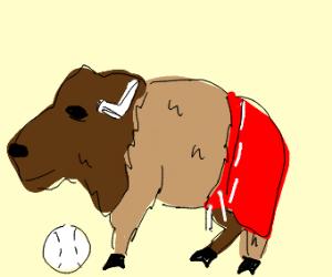 Buffalo Athlete