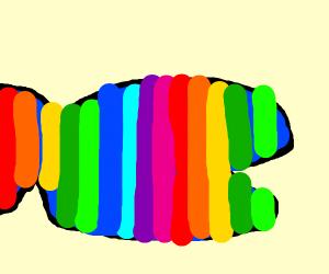 a rainbow whale