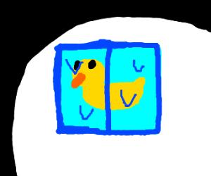 Frozen bird.