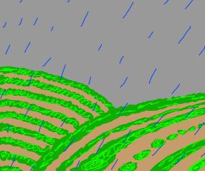 slightly raining on a field