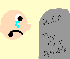 Person Mourning Dead Cat Sorry For Yourloss Drawing By Carson4009