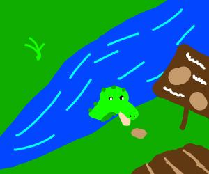 gator eating potato