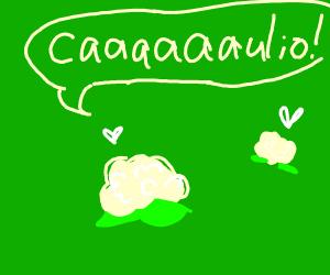 ITS CAUILO. CAAAAAAULIO
