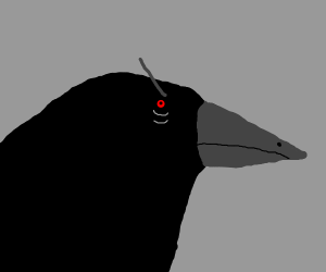 sinister crow