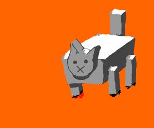 box cat
