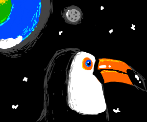 Space toucan