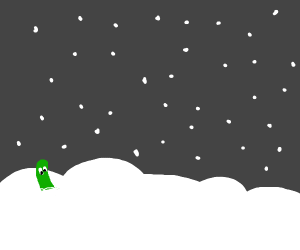 Cucumber sits in the snow