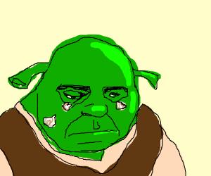shrek and his green onion tears