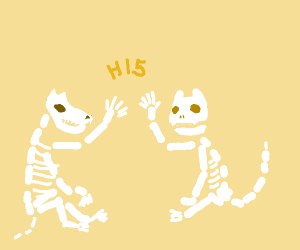 Cat and dog skeleton high 5