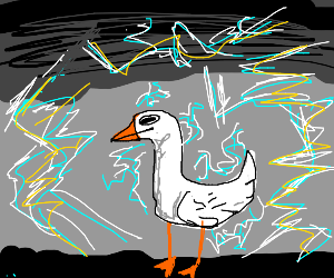 duck in thunder storm