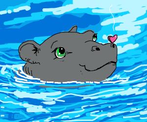 Baby hippo holds tiny heart on it's head