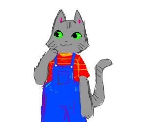 A grey tabby cat furry