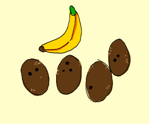 Four coconuts and a banana