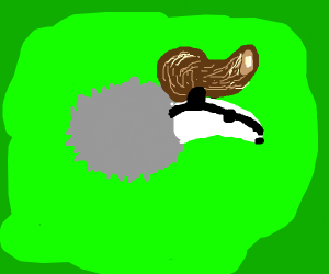 Gray Badger With Hair