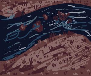 A drowning kitten :(