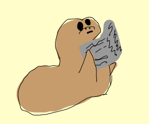 sealion reading a news paper