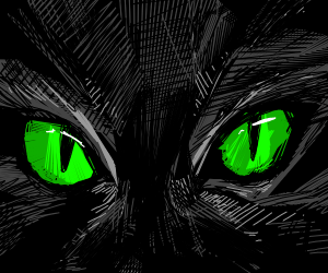 green cat eyes in darkness