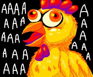 Yelling chicken