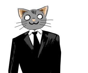 cat wearing a suit 0w0