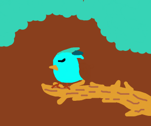 Birb on a branch