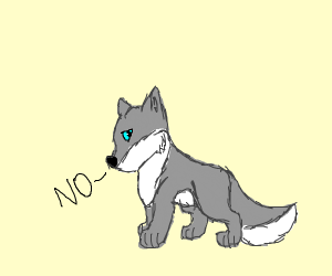 "gray wolf that saya ""No..?"""