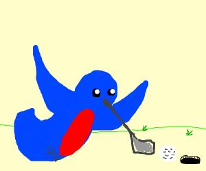 Hummingbird Golfing