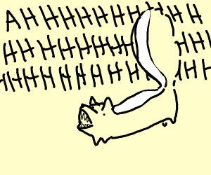 Skunk Screaming