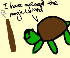 Turtle man has gained magic wand