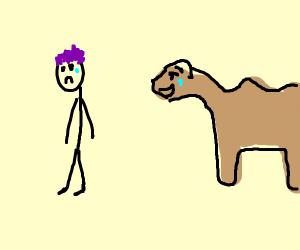 Camel laughing at sad man
