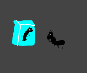 Ant looks at ant frozen in an ice cube