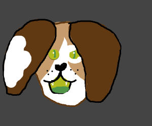 Dog with green mouth and eyes