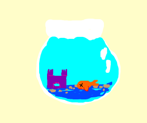 Dead goldfish in a fishbowl
